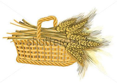 Grafika Klosow Pszenicy Szukaj W Google Graphic Illustration Wheat Vector Graphic