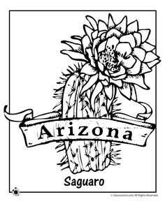 Arizona State Flower Coloring Page Coloring Pages Cactus Drawing