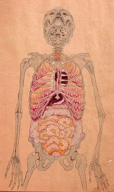 ilustración japonesa de anatomía humana, siglo XIX