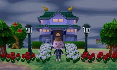 Japanese Themed House In Animal Crossing New Leaf Dream Address