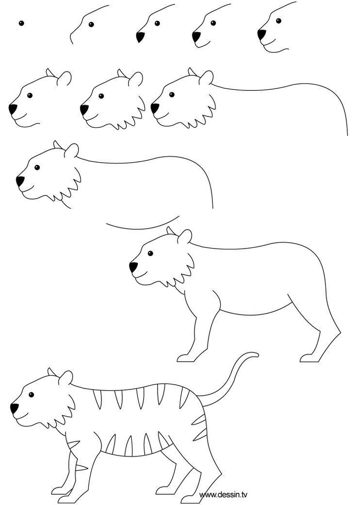 Dessin d 39 un tigre 1792 comment dessiner dessine moi un mouton pinterest comment dessiner - Comment dessiner un tigre ...