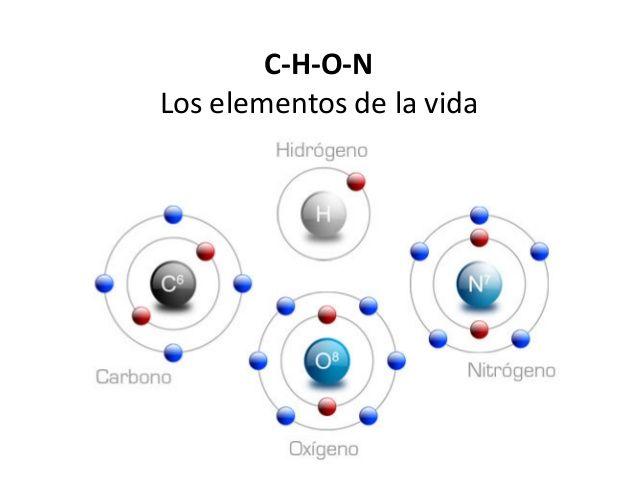 Resultado de imagen de Moléculas de la vida