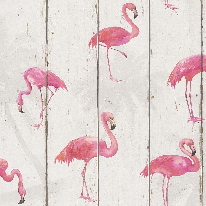 Pinke Flamingos auf creme   Wohnwelten junges Wohnen - - Tapetenmarkt