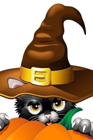 Pin by ✝Almas🌹 👻😈 Oscuras ✝ on Halloeen 2017 Pinterest - halloween decorations black cat