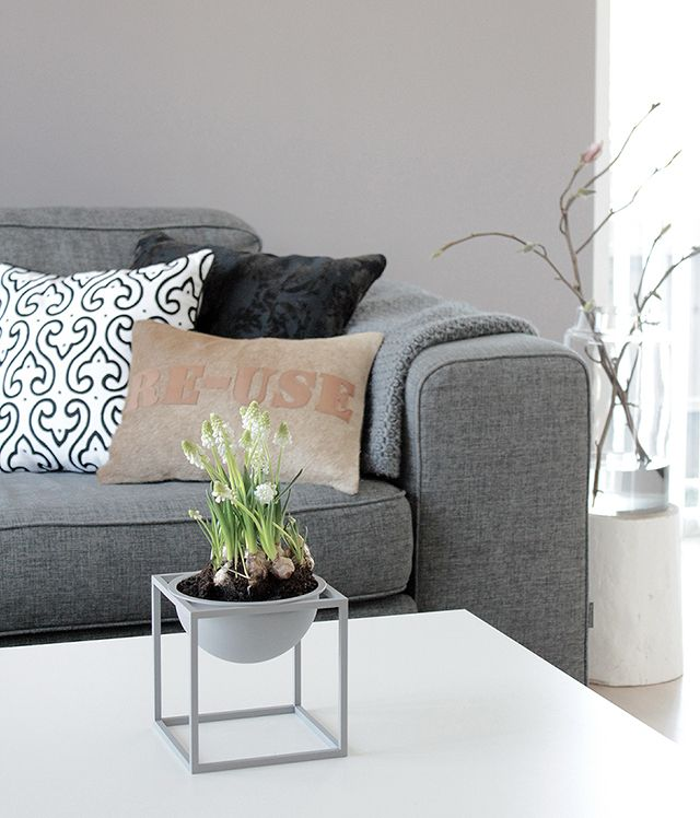 grey couch + Kubus Bowl  http://www.tonjeboganes.com