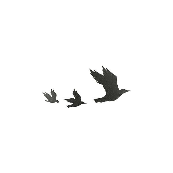 Birds Png Tumblr Buscar Con Google Liked On Polyvore Featuring Fillers Bird Silhouette Tattoos Flying Bird Silhouette Collar Bone Tattoo