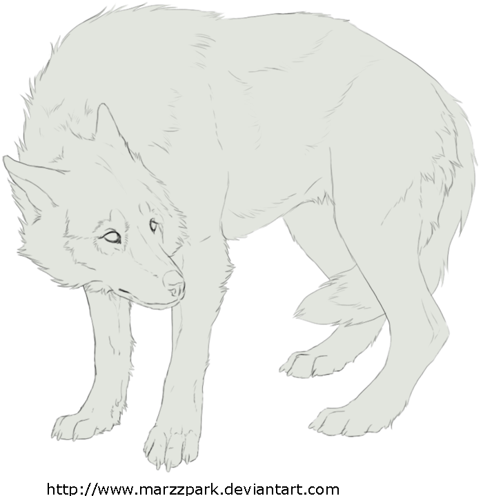 Free Lineart Wolf Scary By Marzzunny Dog Sketch Animal Drawings Animal Sketches