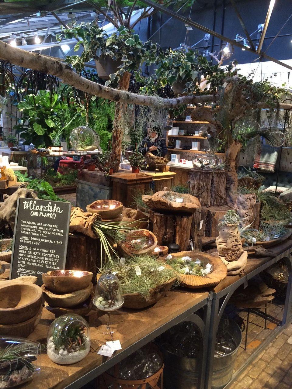 Foto di terrain Garden Café 13 tips dari 562 pengunjung