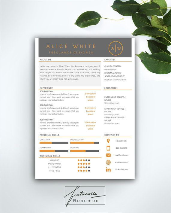 Resume Template 3 page / CV Template + Cover Letter / Instant
