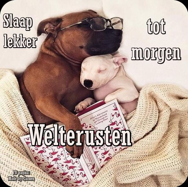 Welterusten slaap lekker tot morgen BLESS Good night