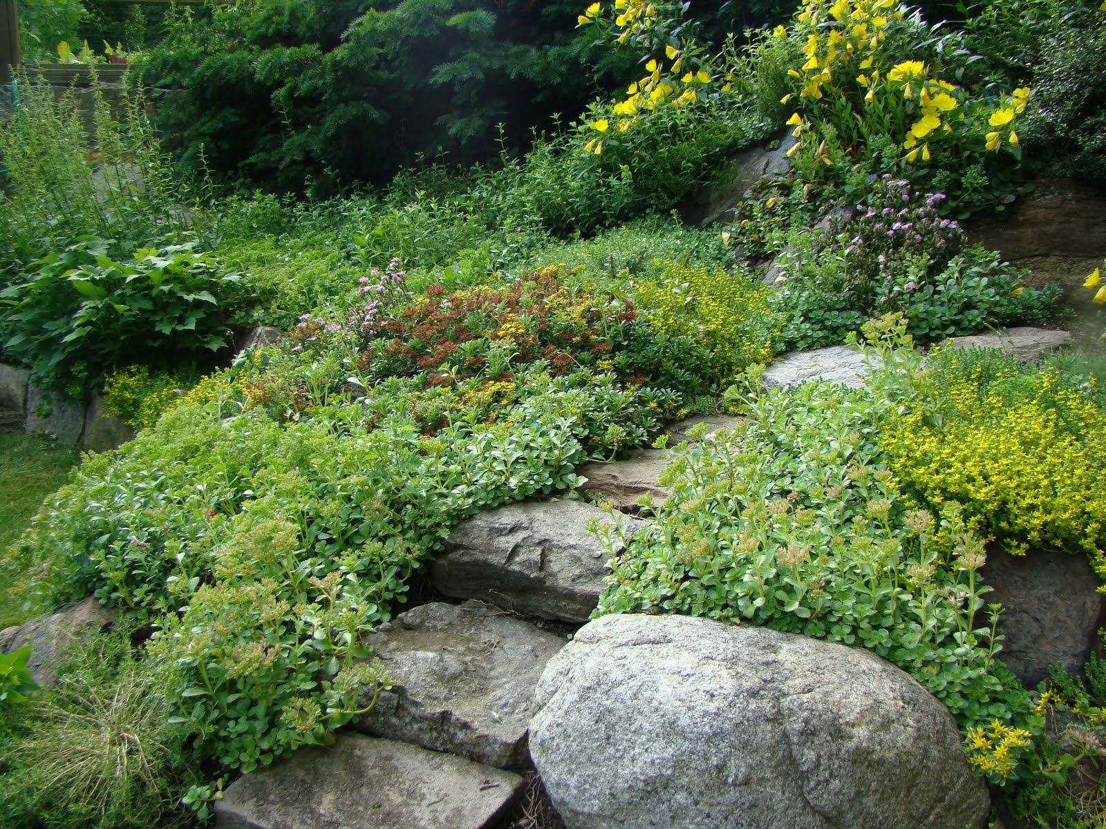 Serenity In The Garden: A Rock Garden To Celebrate Spring