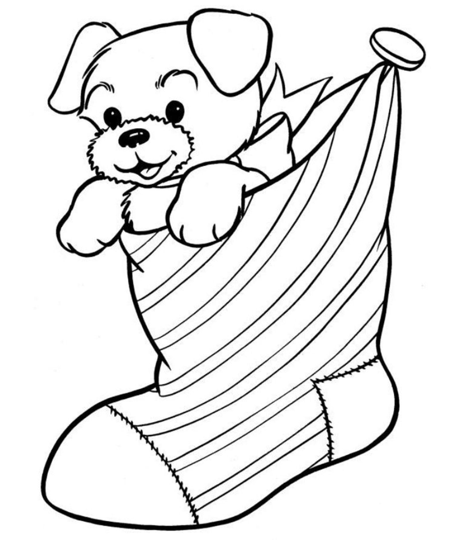 Christmas Coloring Puppy In The Stocking Free Pages For
