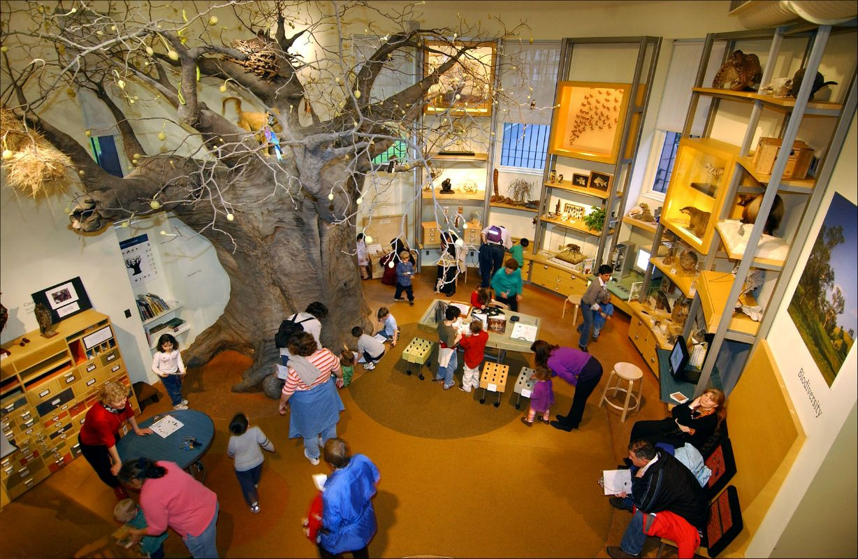 7 Science Museums to Visit This Summer