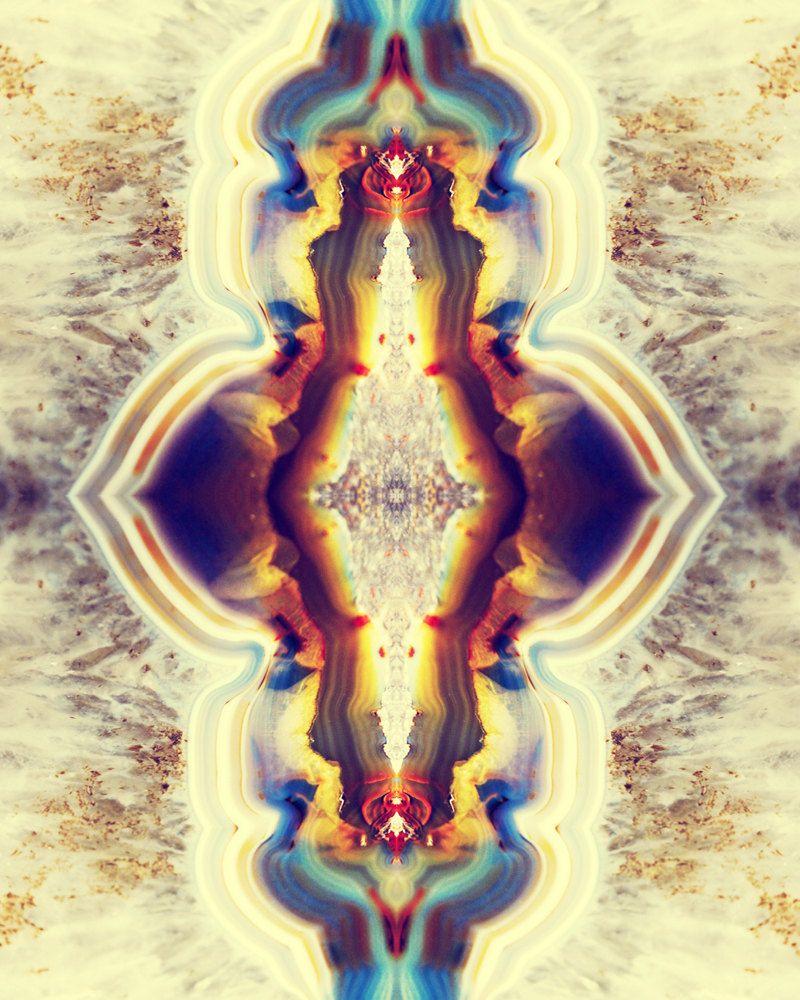 Petrified Wood Flower Photograph 8x10 psychedelic kaleidoscope ...