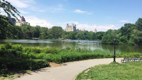 Thinking back to when I spent a few days exploring Central Park ❤️ (at Central Park)