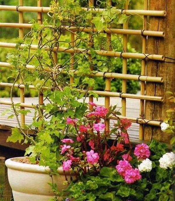 bambus stangen kletterhilfe rankgitter f r pflanzen selber machen garten balkon und pflanzen. Black Bedroom Furniture Sets. Home Design Ideas