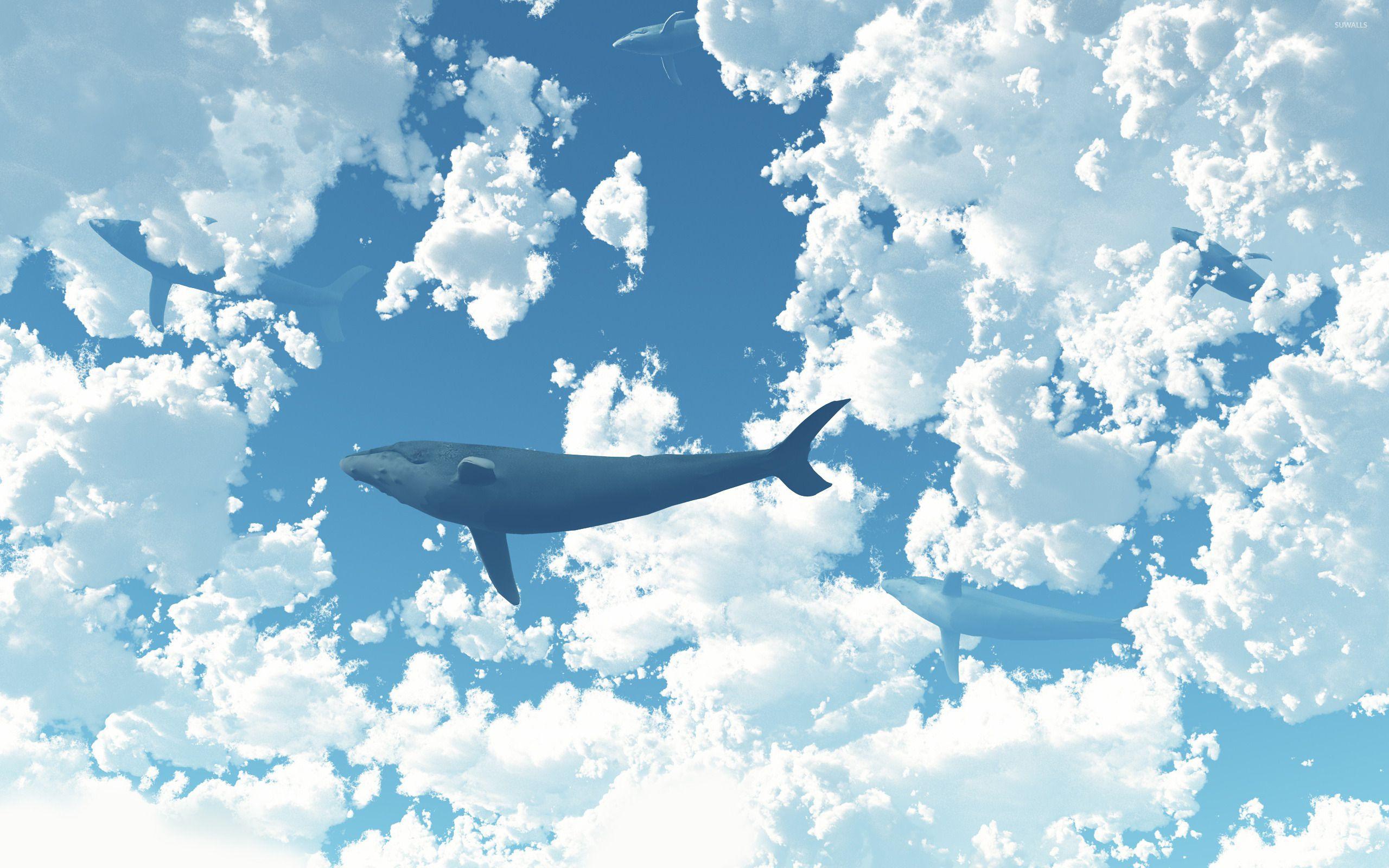 Whale in the sky 2 wallpaper - Artistic wallpapers - #20809 | 컴퓨터 배경화면, 배경화면, Pc 배경화면