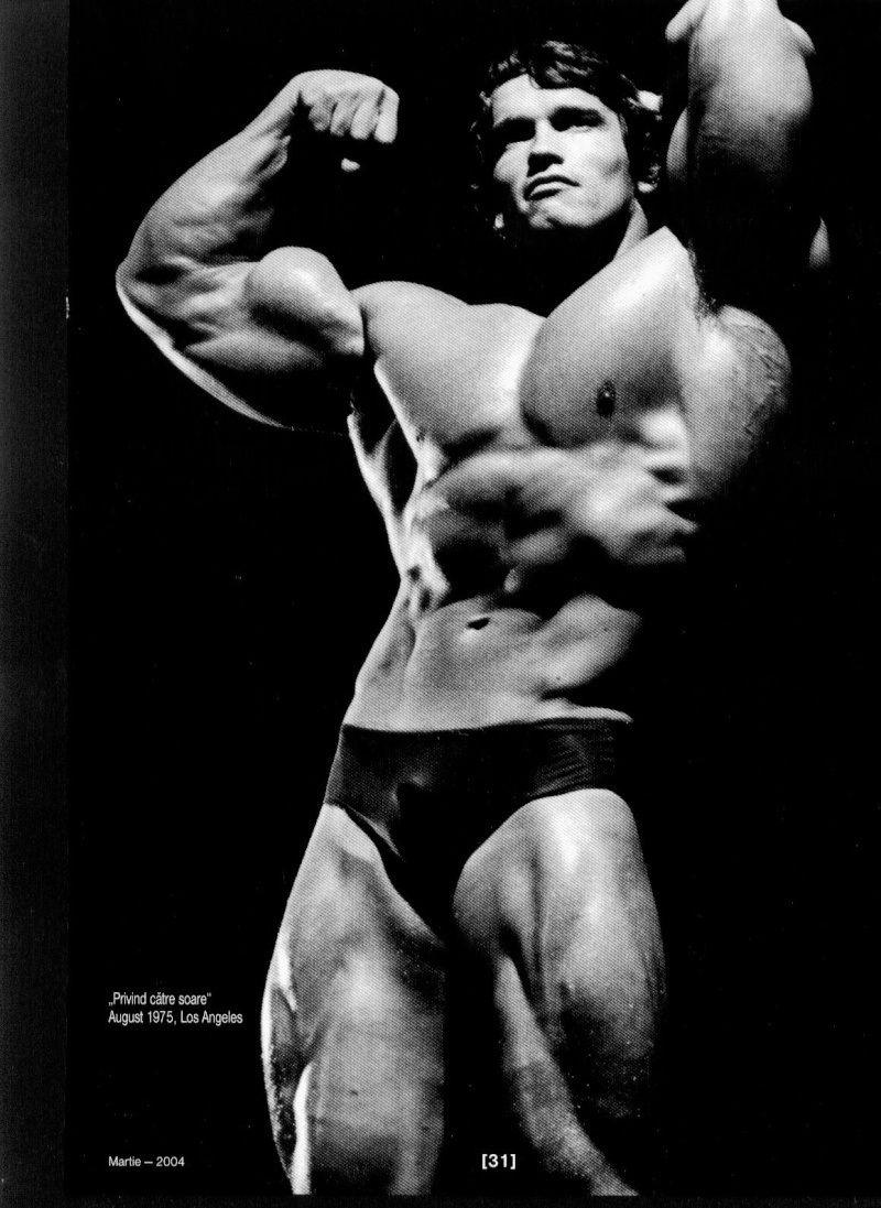Arnold schwarzenegger wallpaper hd bodybuilding arnold schwarzenegger wallpaper hd bodybuilding 2faea70202d28a4f65da3c8613ade43c large 614197 voltagebd Images