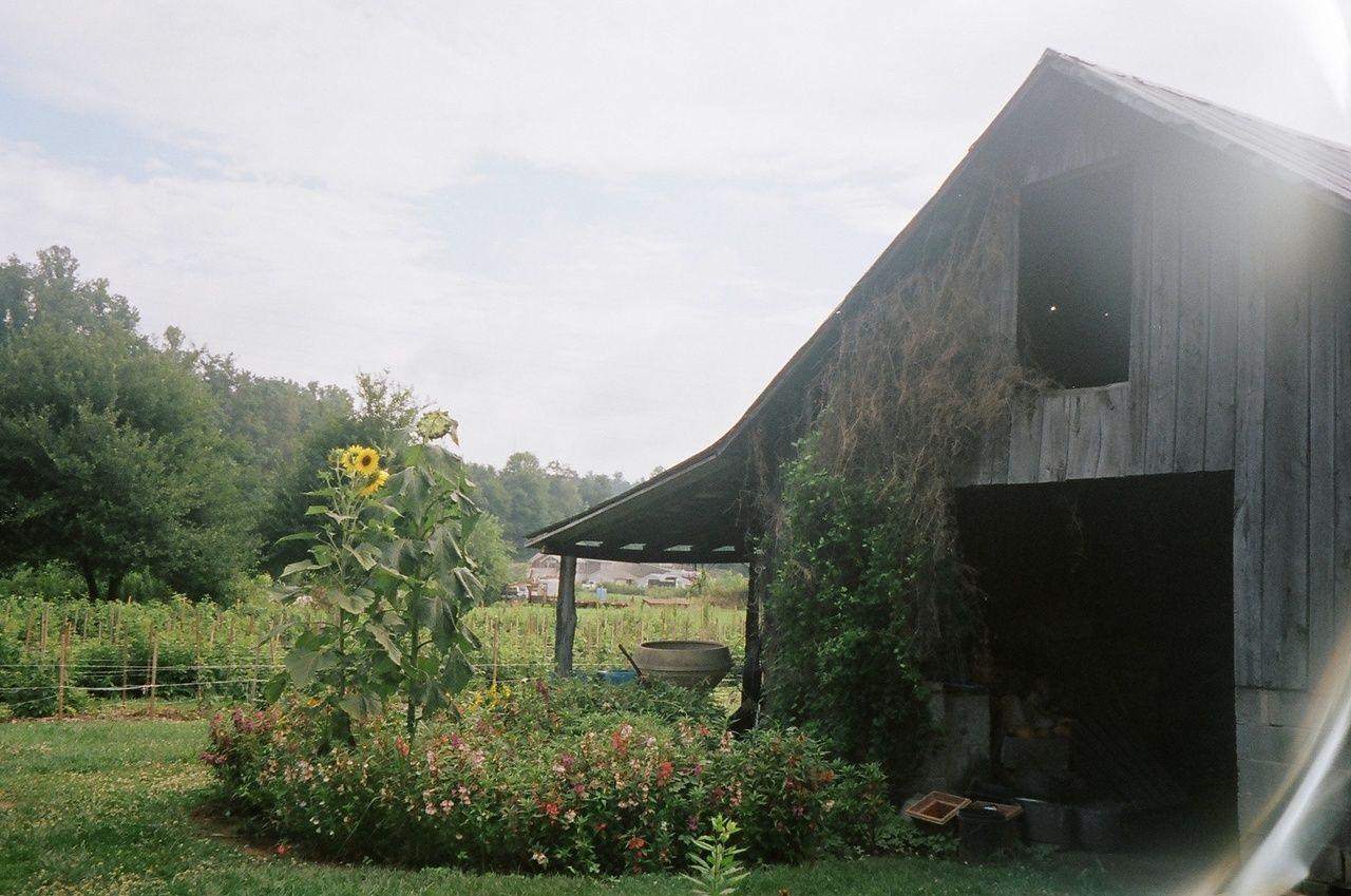 family and farm: Photo