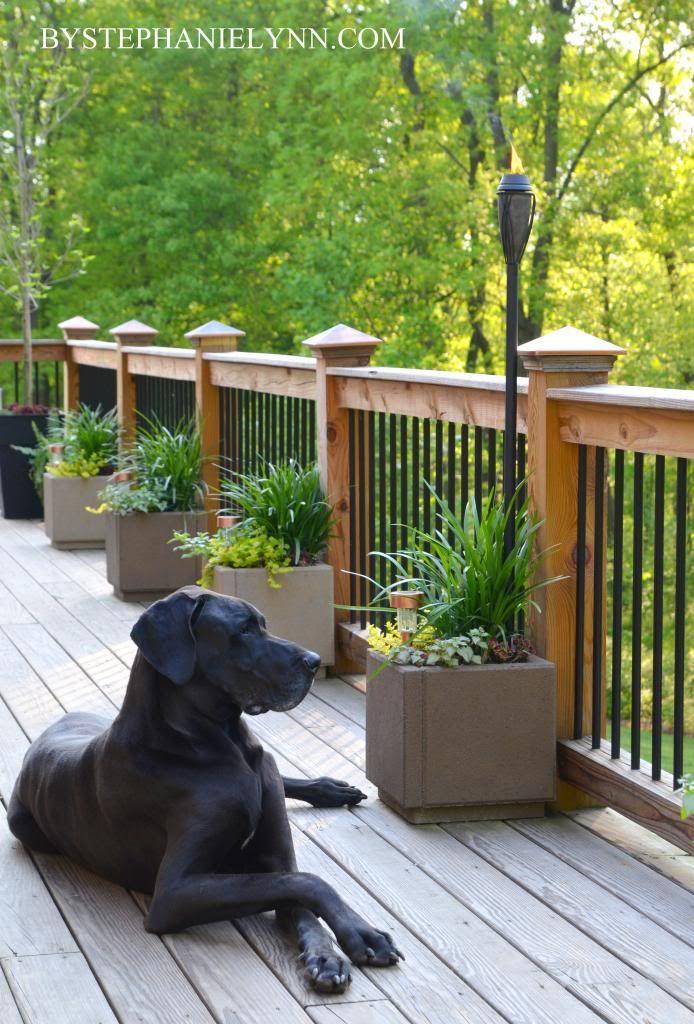 Outdoor Living Space Essentials Outdoor Spaces Deck