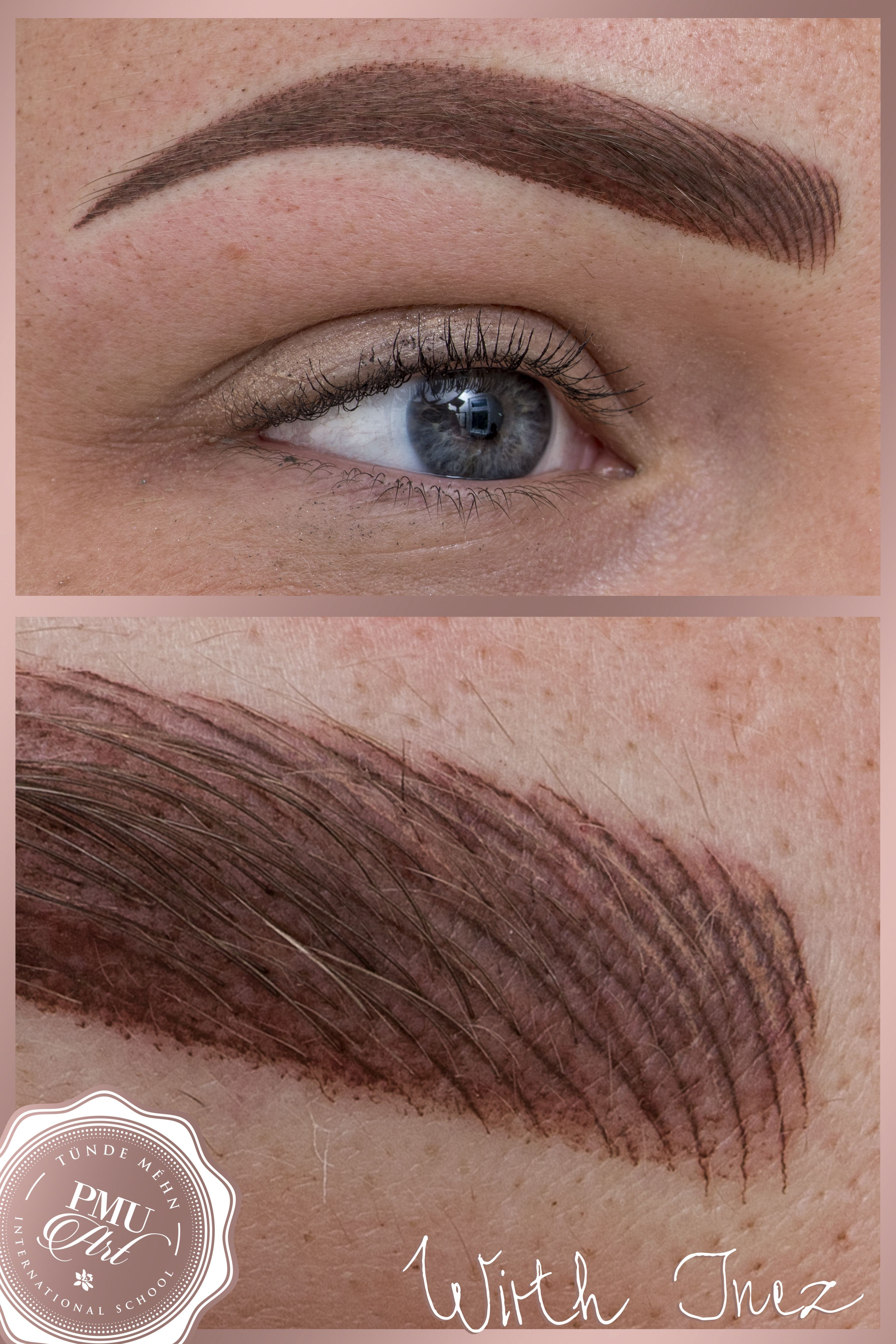 Combined eyebrow tattoo, hairstroke and ombre technique mixed | PMU ...