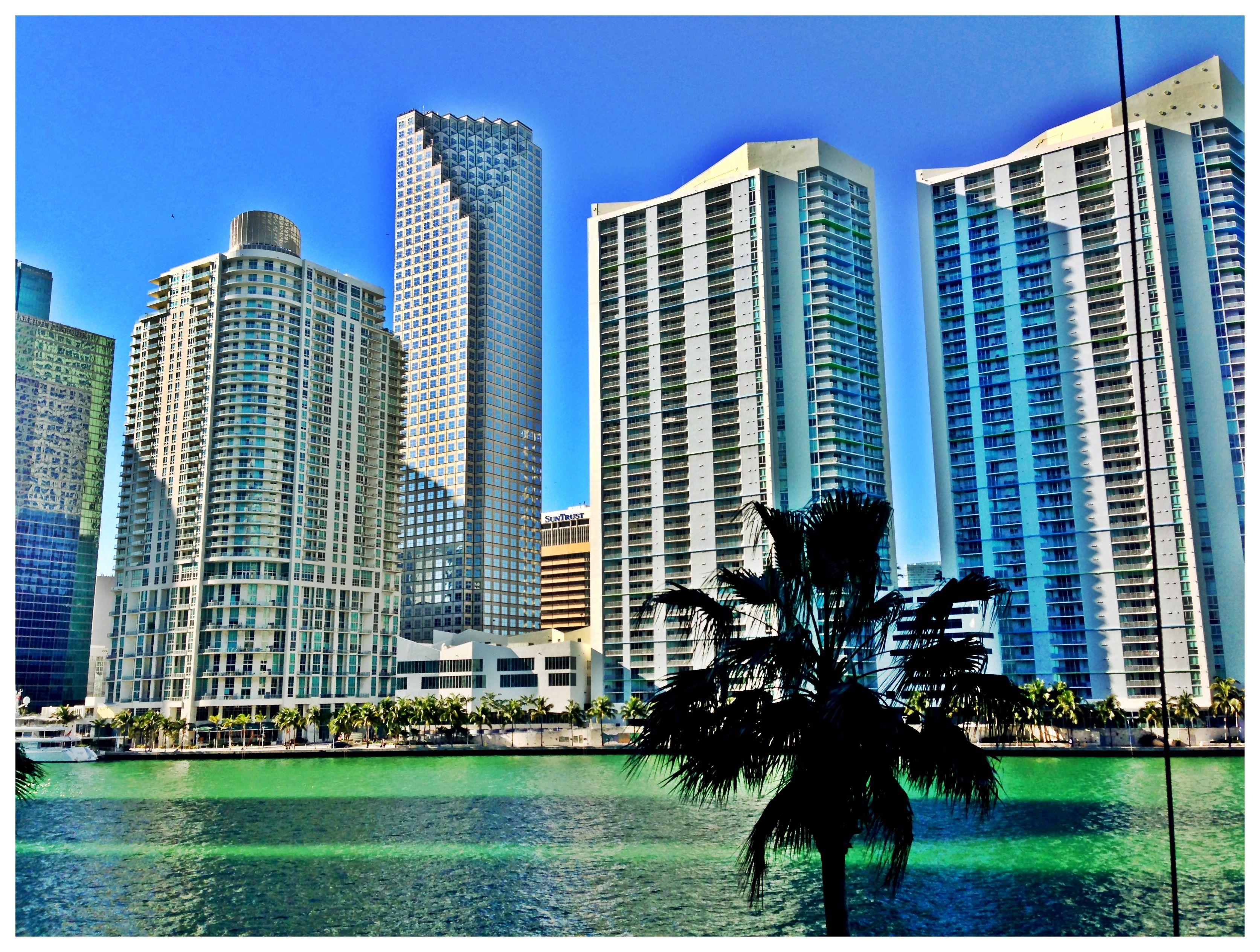 Downtown Miami. | Downtown miami, Miami travel, Miami florida