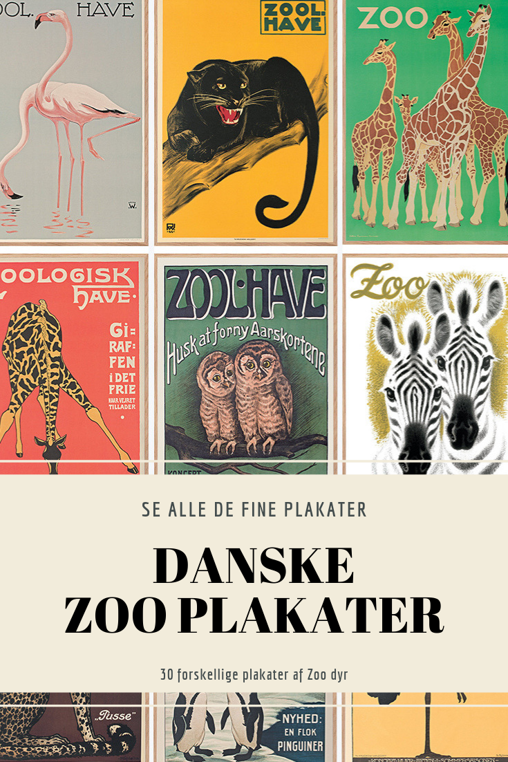 Pin Af Carolina Pa Graphic Design I 2020 Plakater Zoo Dyr