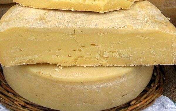 the most expensive cheese in the world cheese donkey is very rare