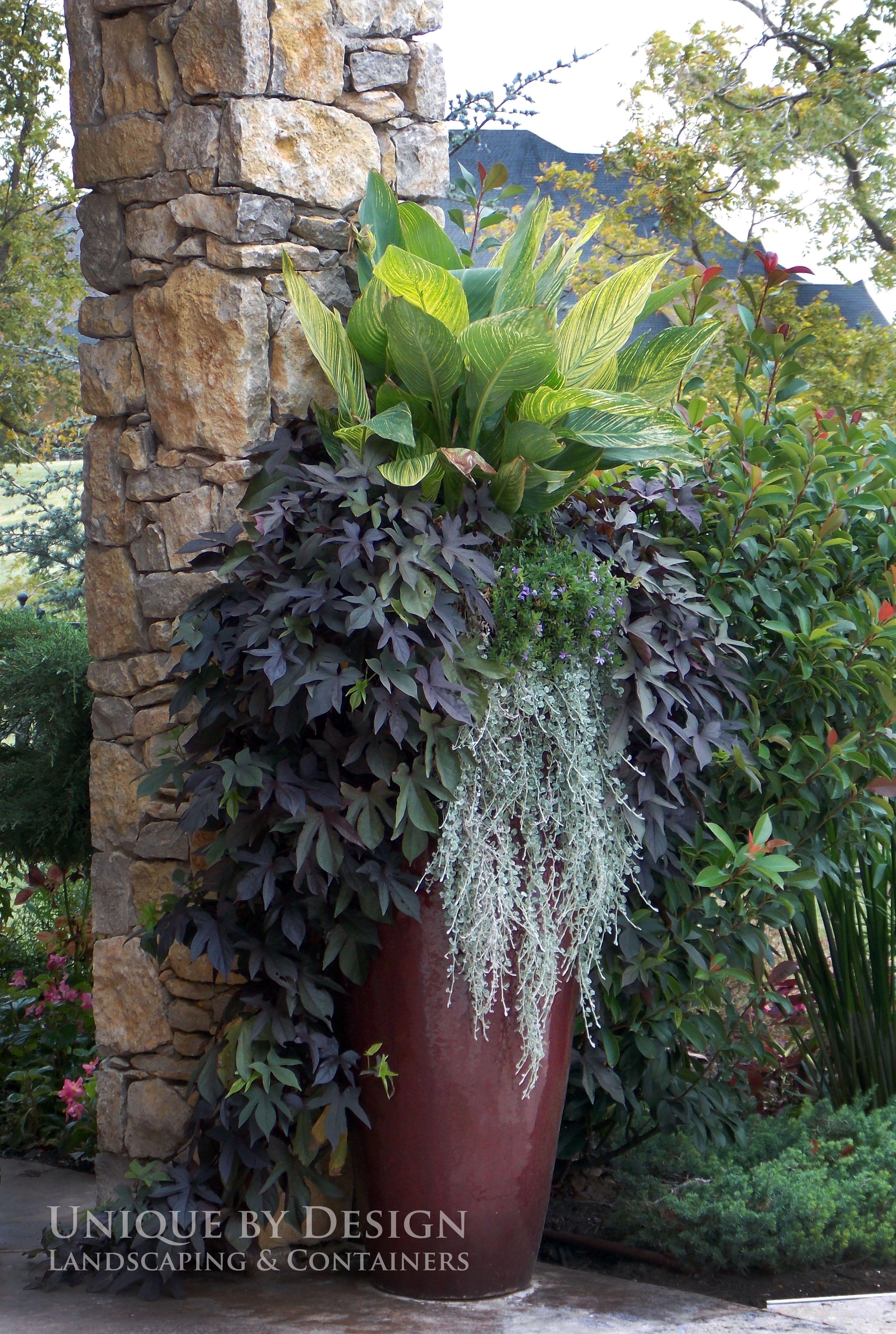 Featured in Oklahoma Gardener Magazine l UniquebyDesign