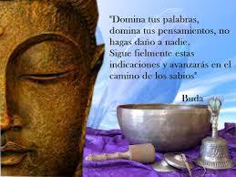 Pin En Frases De Buda