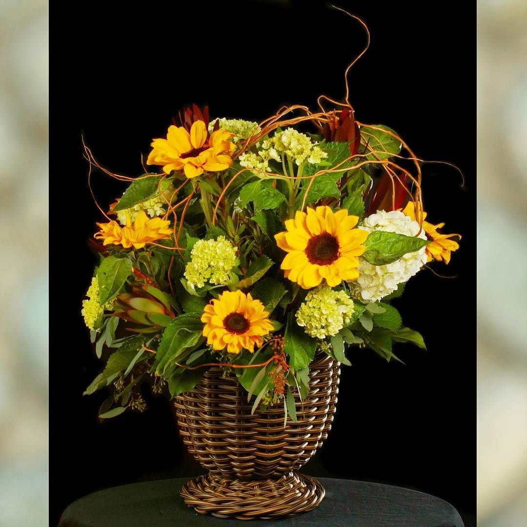 @sherwood_florist #florist #floraldesign #floraldesigner #flowerlovers #flowerstagram #flowermagic #interiors #interiordesigner #flowerart #designers #losangeles #beautifulplace #eventplanner #events #bouquet #weddingplanner #weddingflowers #weddingideas #weddinginspiration #weddingphotographer #orchid #bloomnation #claremont #claremontvillage #sunflower #Alamango #Bridal #Textiles #Wedding #AlamangoBridal #AlamangoTextiles #Malta #LoveMalta #Bridesmaid #WeddingDress