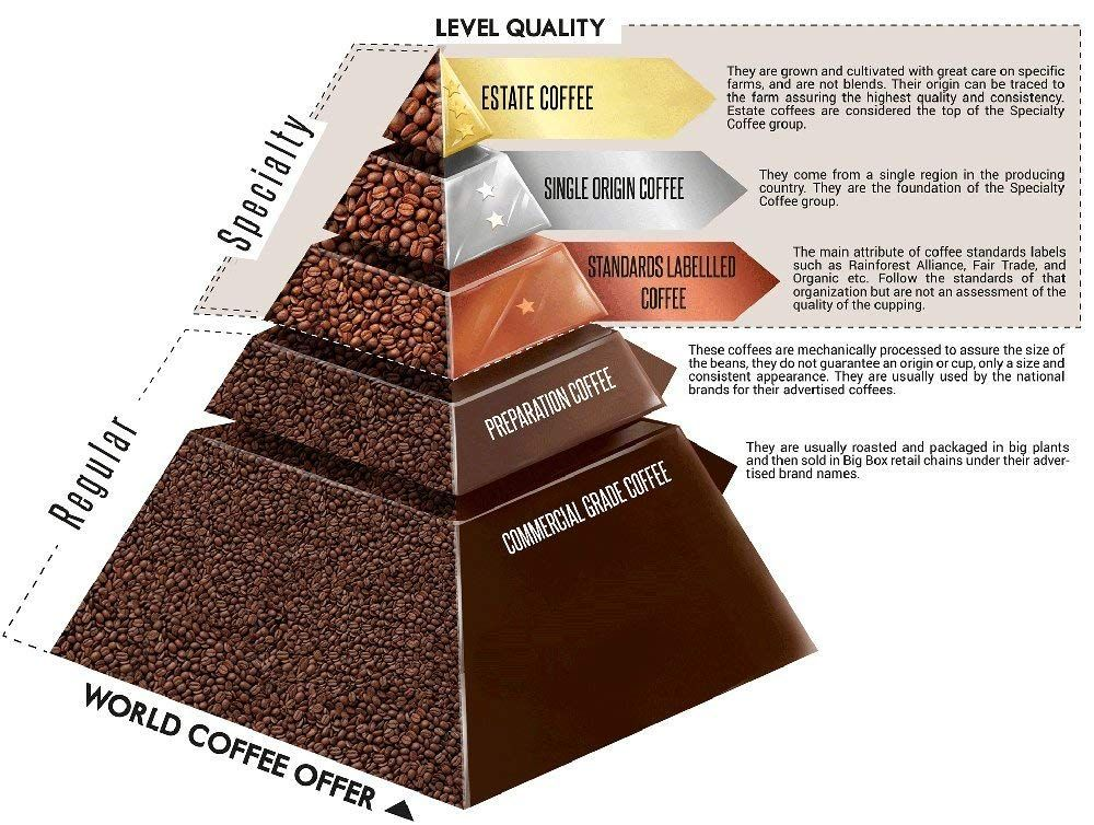 Amazon Com 5 Lb Gesha Geisha Unroasted Green Coffee Beans Specialty Colombia Estates Direct Farm Tra Gourmet Coffee Beans Coffee Infographic Coffee Brewing
