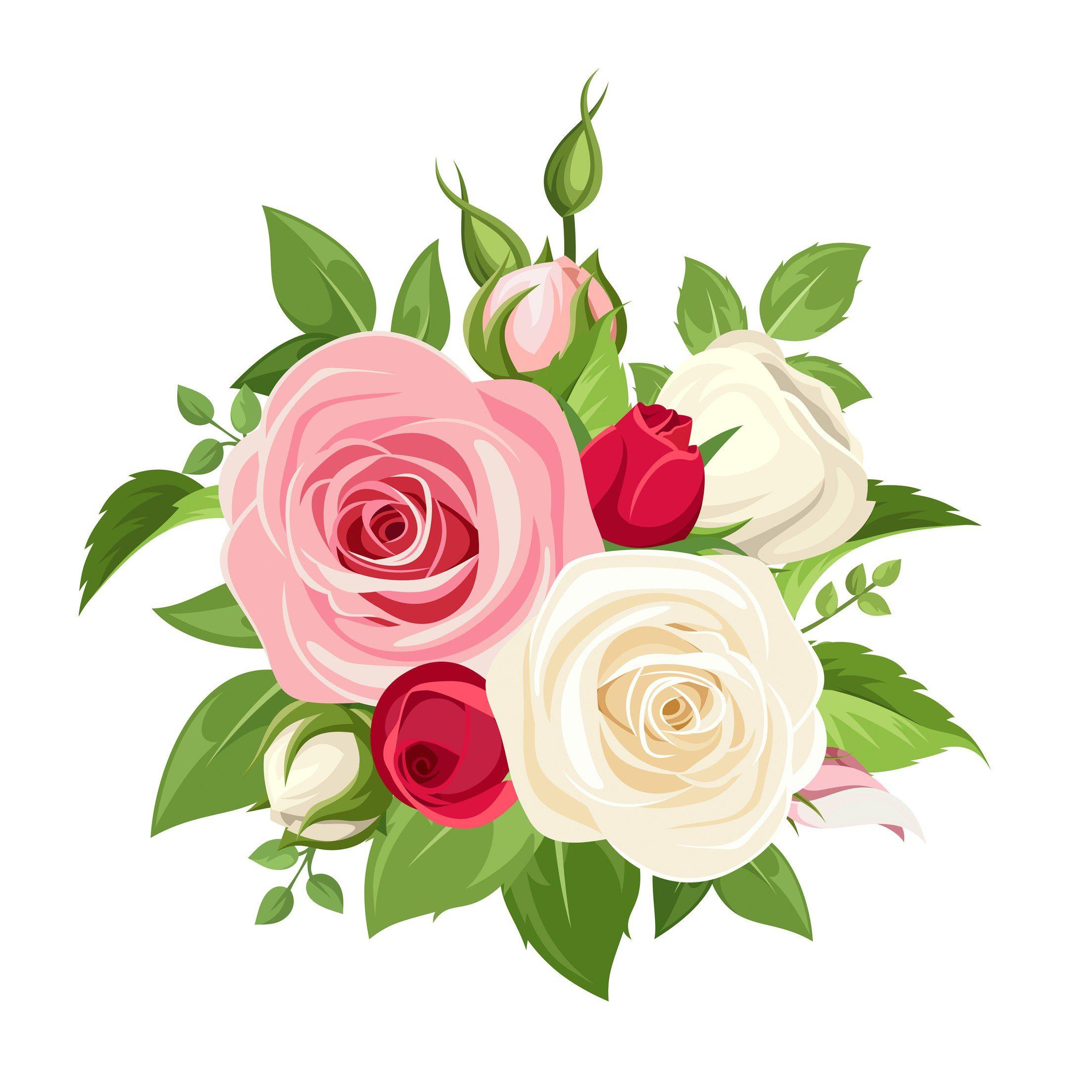 flowers vector rosa png Rosas, Arreglo floral rosas