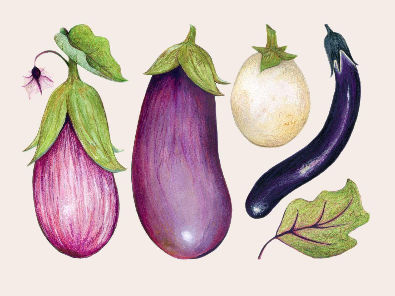 La peinture aubergine / / Illustration de par KendyllHillegas | Art ...