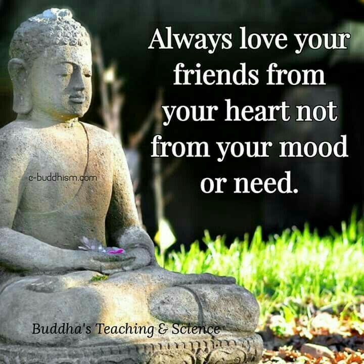 Pin By Aarti Ajani On Friends R Life Quotes Buddha Quote Life Quotes Amazing Buddha Quotes About Friendship