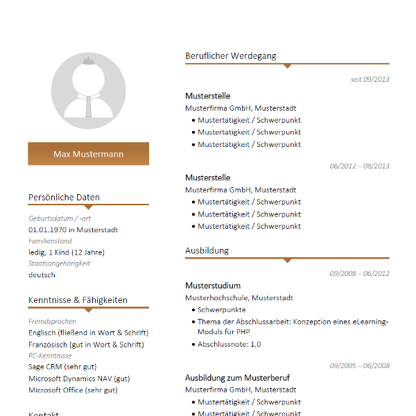 resume template mit