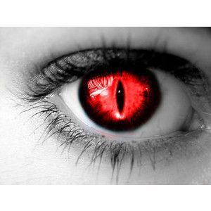 Cool Eyes Google Search Cool Eyes Pinterest Eye