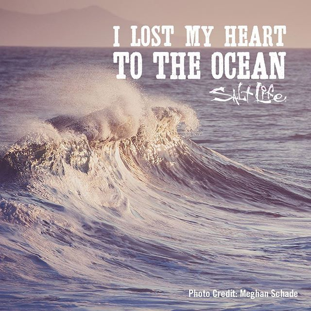 Quotes About Ocean I Lost My Heart To The Ocean  Ocean Quotes  Beach Quotes