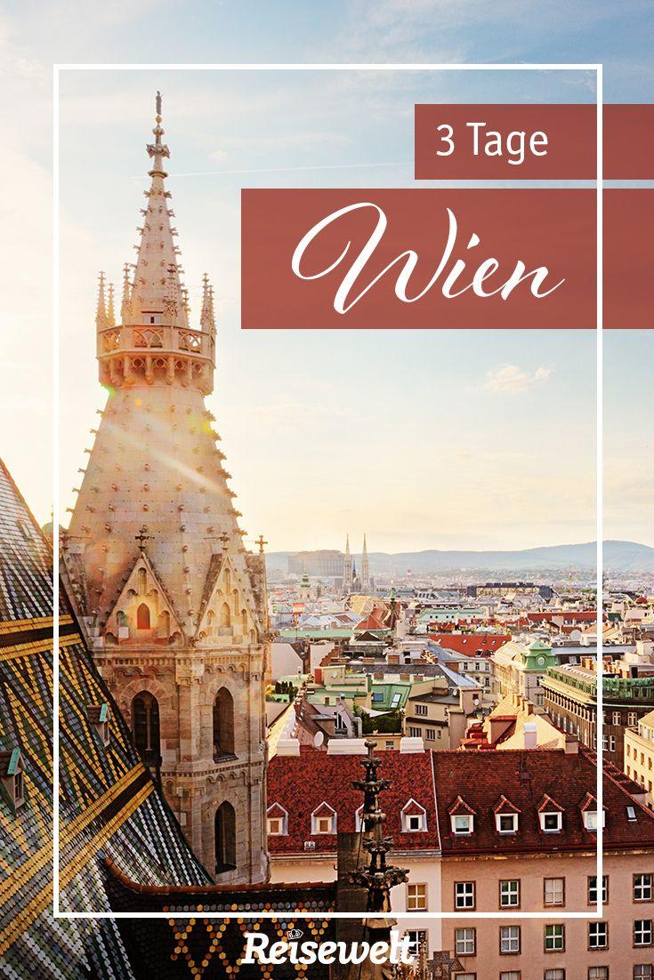 Wien ist perfekt für einen spontanen Trip über das Wochenende. Wir zeigen euch, wo wir am liebsten essen gehen, wo das Shoppen nicht zu teuer wird und welche Sehenswürdigkeiten einfach dazugehören - auch der ein oder andere Geheimtipp ist dabei.   #geheimtipp #sehenswürdigkeiten #bilder #essen #shoppen