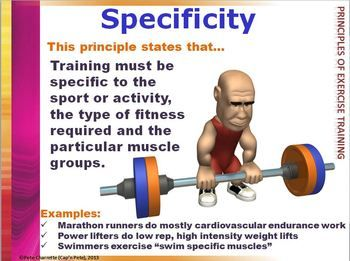 Fitt Muscular Strength And Endurance