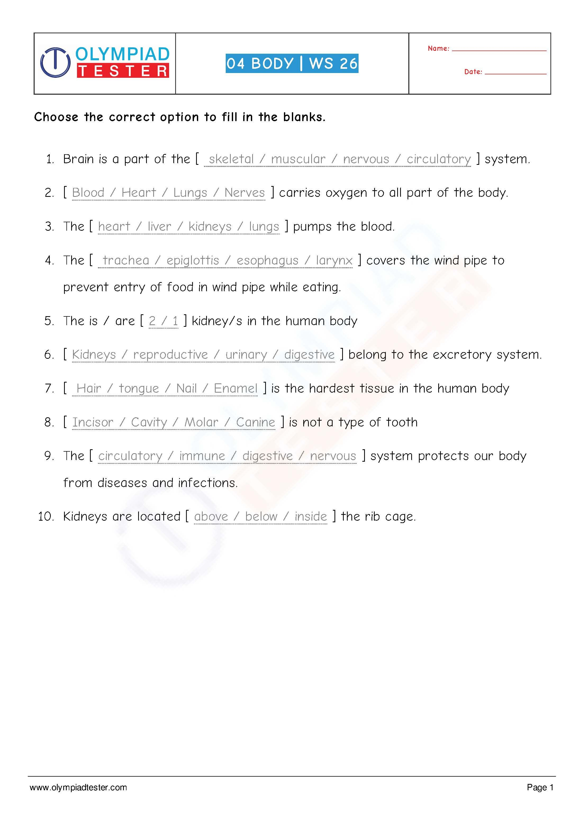 Human Body Worksheet 26 Class 4 Download This Science Sample
