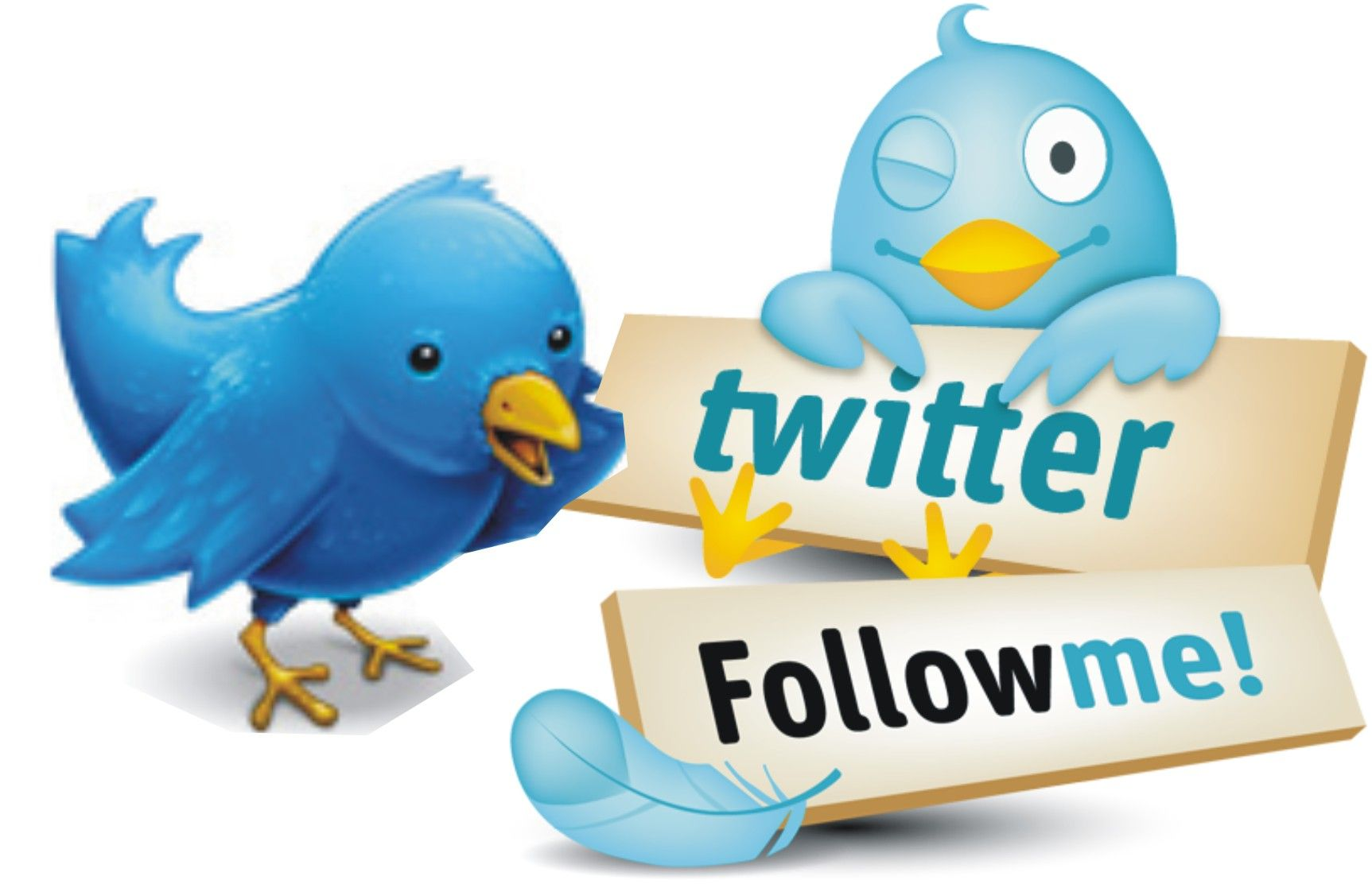 zebraexpress: give you 1,000 twitter followers for $5, on fiverr.com