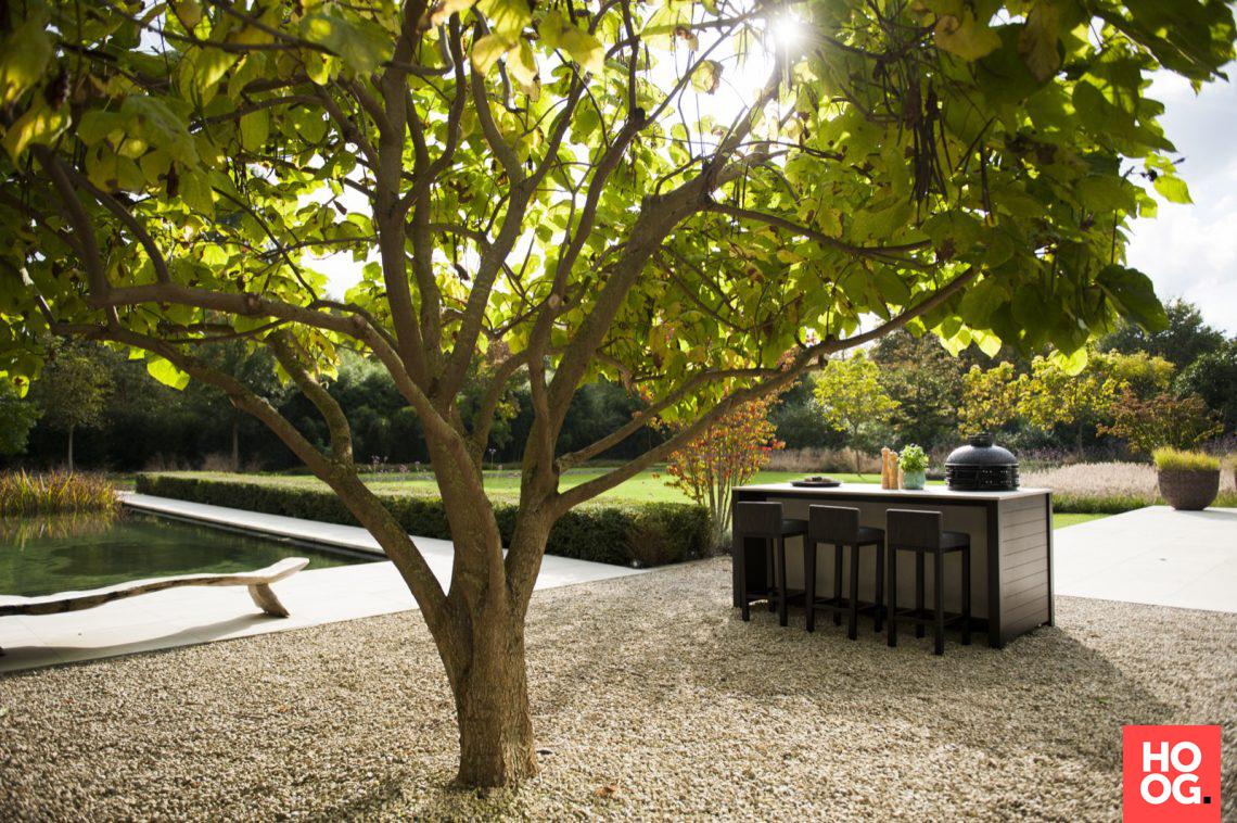 Groenseizoen minimalistische tuin met zwemvijver hoog