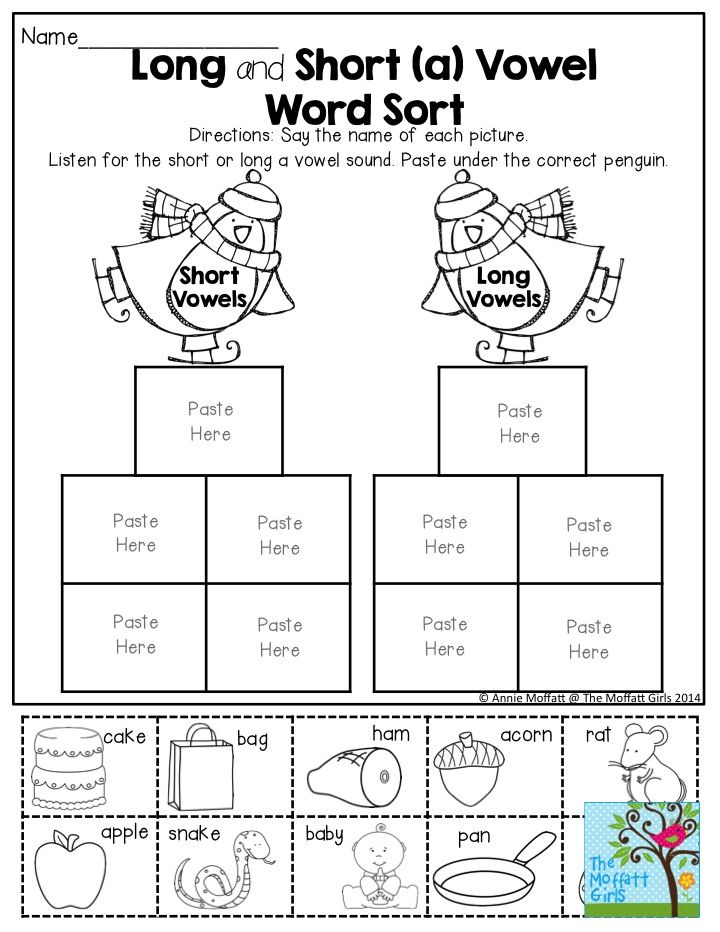 Long and Short Vowel Sort- FUN and engaging