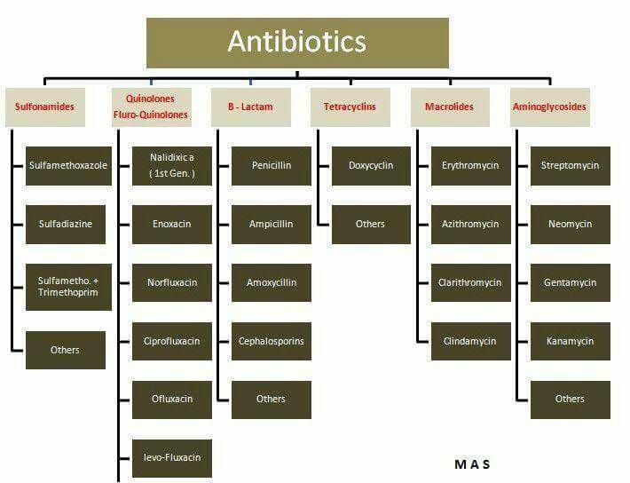 Pin di Iron-will Alchemist su Biochemistry Pinterest - amino acid chart