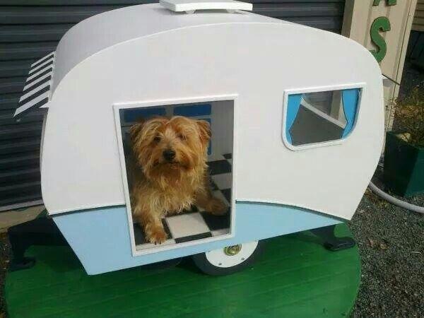 Cute dog house trailer