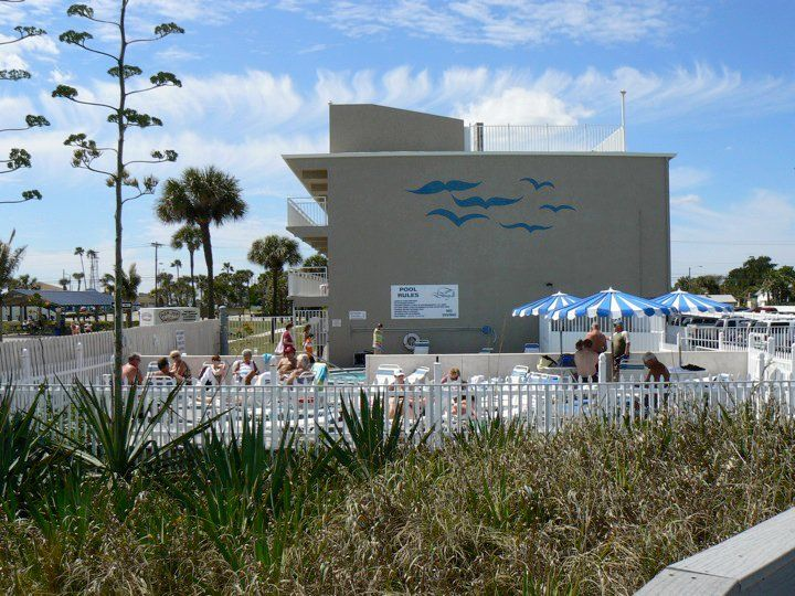 The Seagull Cocoa Beach