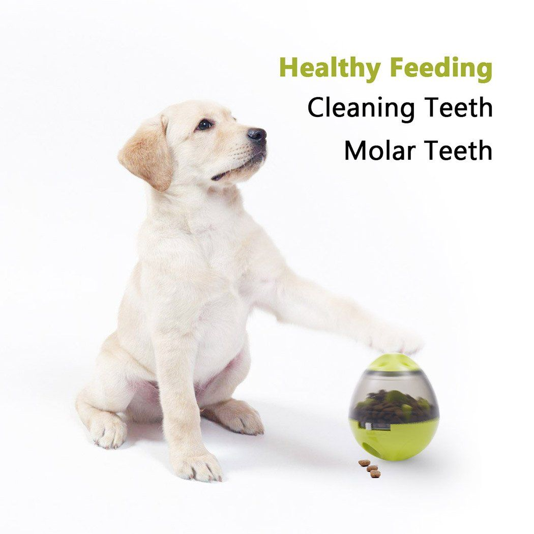 Generic Interactive Dog Toy Food Dispenser Ball Toy For Small