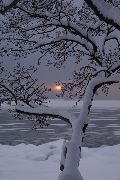 Winter sunset on a snowy lake.