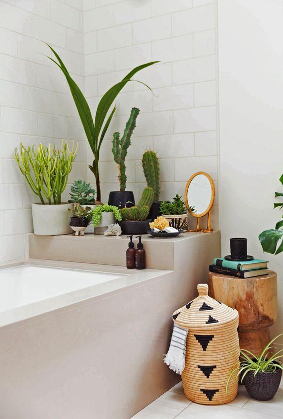 Badezimmer pflanzen veenendaalcultureel for Badezimmer pflanzen